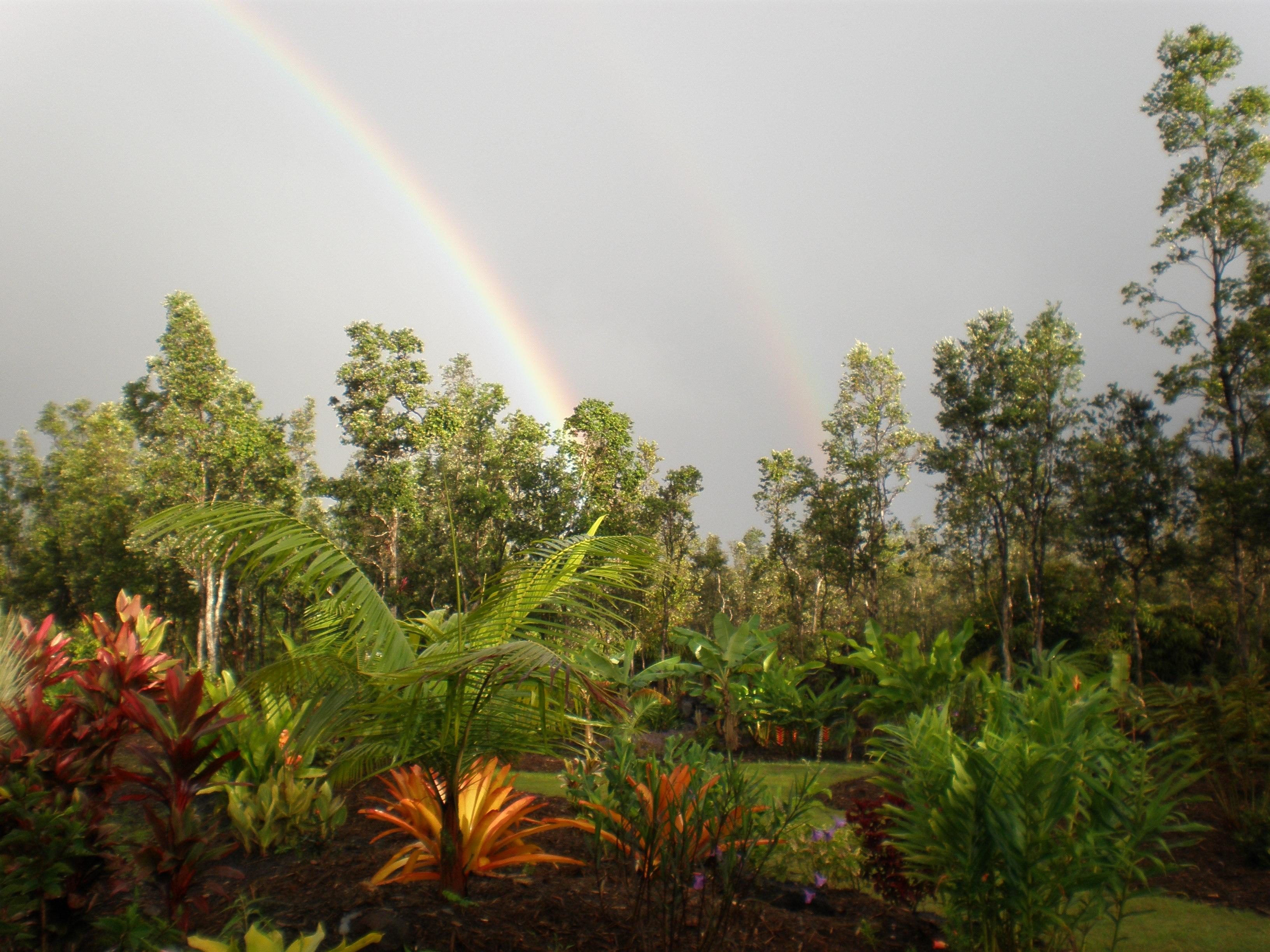 A Double Rainbow
